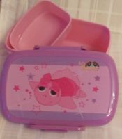 Peepers turle lunchbox